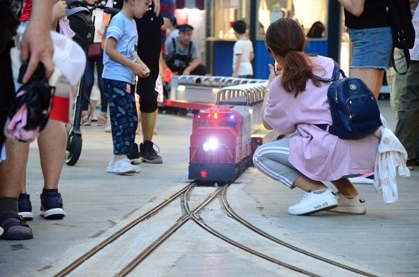 分清电动观光车和电动观光小火车